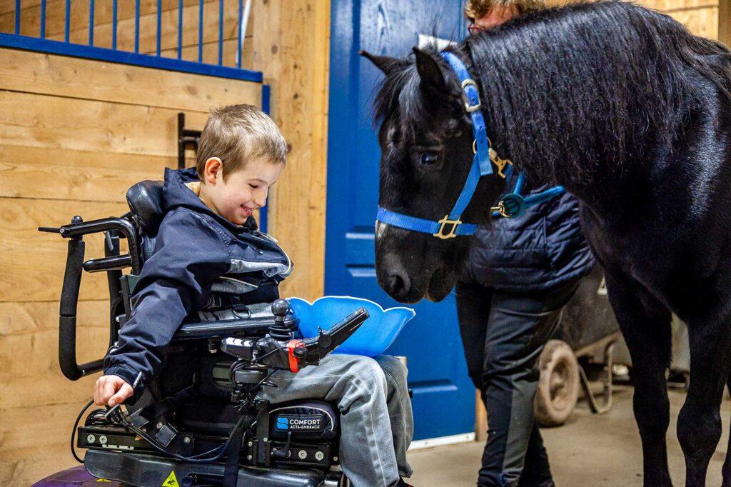 Jeune homme en chaise roulante qui nourrit un cheval