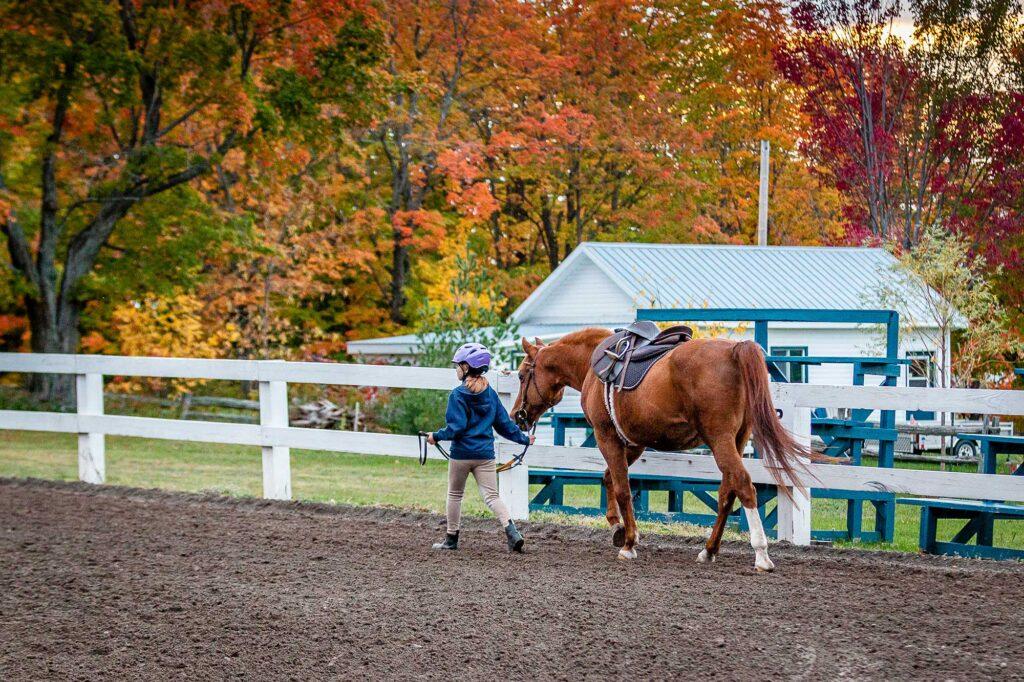 Jeune fille qui marche à côté de son cheval